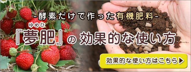酵素 有機肥料 『夢肥』の効果的な使い方
